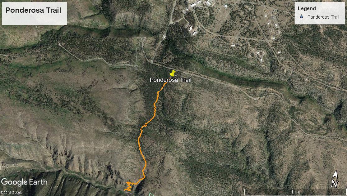 Ponderosa Trail
